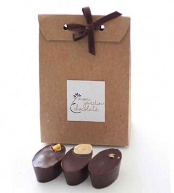 Chocolats bio